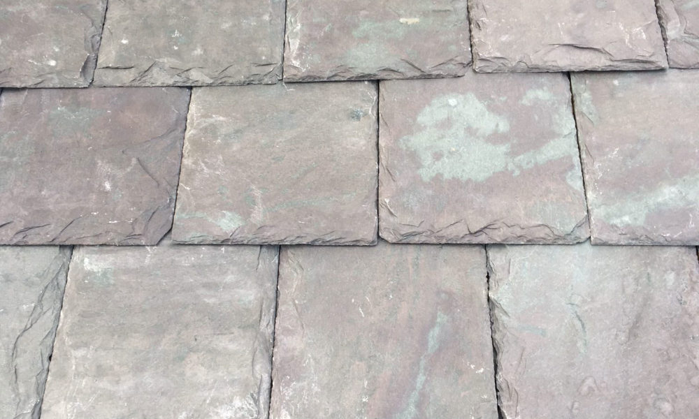 Vermont Mottled Purple slate